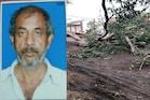 ગુજરાતમાં Tautkae વાવાઝોડાની અસરઃ કામરેજના માંકના ગામે ઝાડ નીચે દટાતા એકનું મોત
