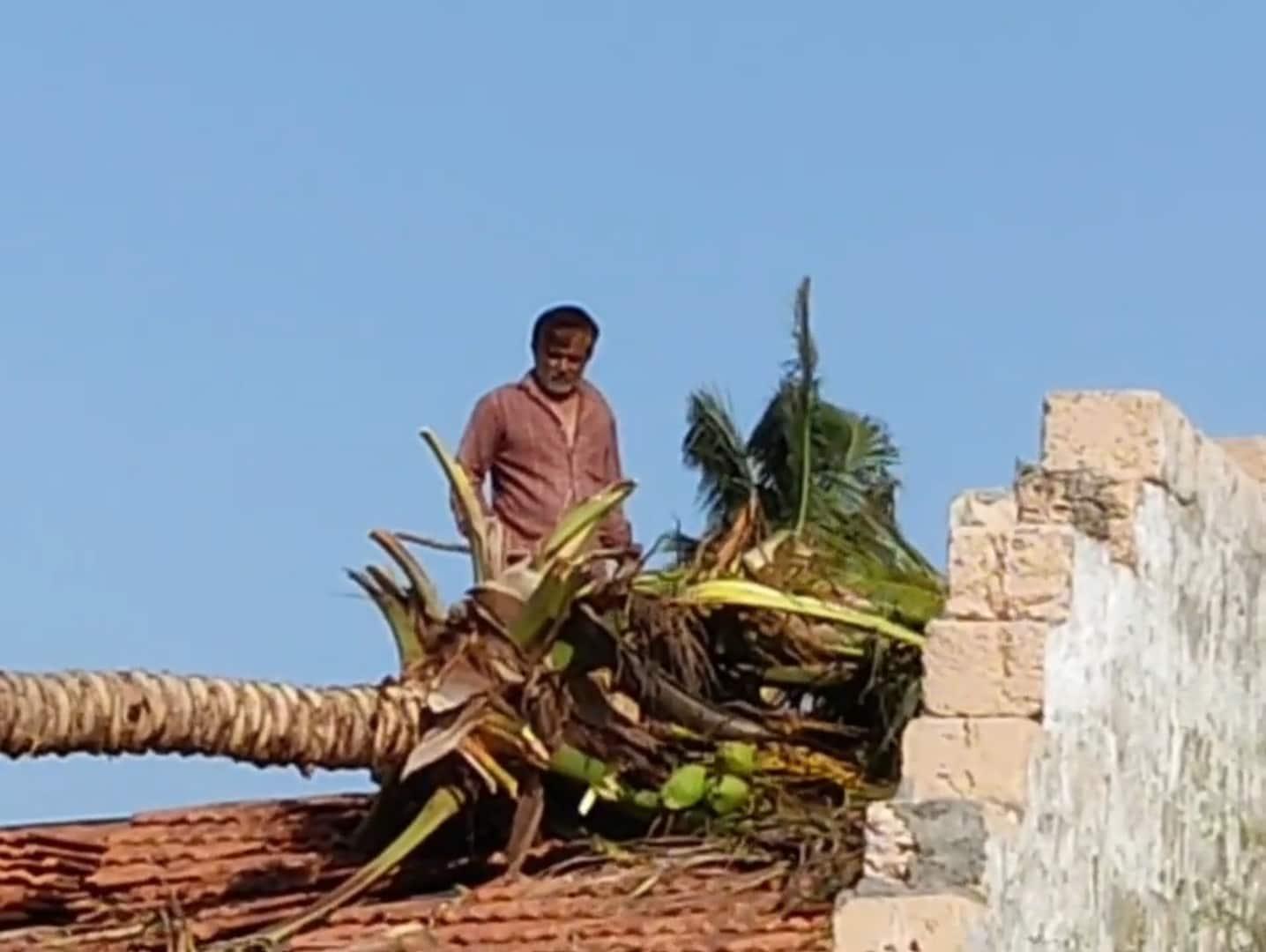 તમામ ગામોમાં મુલાકાત સમયે પાટીલે ખેડૂતોને સાંભળ્યા હતા. જેમાં ખેડૂતોએ વાવાઝોડાંના કારણે થયેલી નુકશાનીને લઈ પાટીલને રજુઆત કરી હતી. તેમજ વહેલી તકે સર્વે કરી યોગ્ય સહાય શરૂ કરવામાં આવે તેવી પણ રજુઆત કરાય હતી.