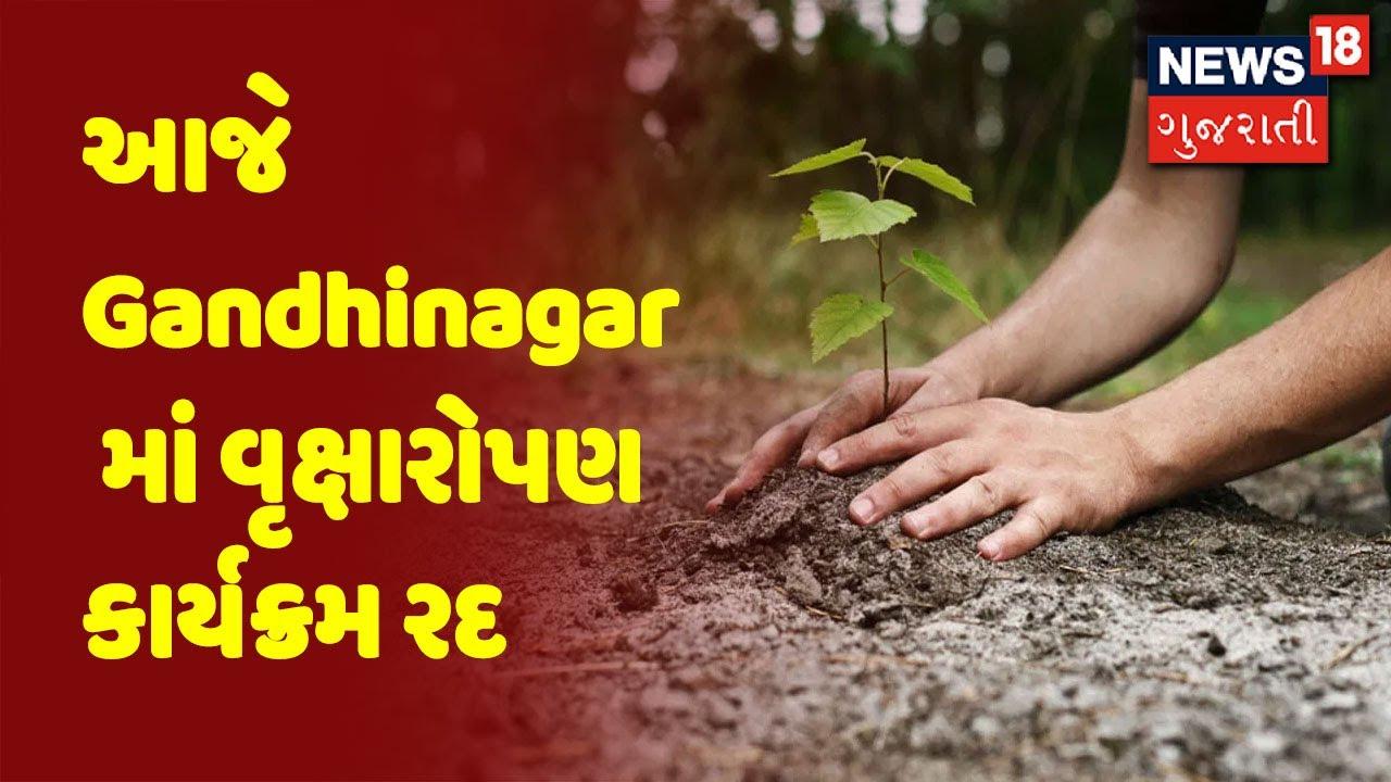 ગાંધીનગર: ગઈકાલે વરસાદ બાદ પાણી ભરાતા 4 બેઠકોમાં વૃક્ષારોપણનો કાર્યક્રમ રદ કરાયો