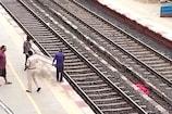 મહિલાએ બે પુત્રો સાથે ટ્રેન નીચે મૂક્યું પડતું, માતા-નાના પુત્રનું મોત, મોટા પુત્રનો બચાવ