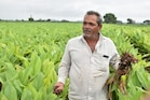 રાજકોટ: વલ્લભભાઈ આ ઔષધીય પાકની પ્રાકૃતિક ખેતી કરી કરે છે વર્ષે 8 લાખથી વધુનું ઉત્પાદન