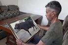Death of Sultan Bull: લાખો રૂપિયામાં વેચાતું હતું 'સુલ્તાન'નું સ્પર્મ, જાણો શું હતો ખોરાક