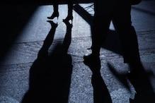 آئی اے ایس افسر کی بیٹی کا پیچھا کرنے کے الزام میں ہریانہ بی جے پی صدر کا بیٹا گرفتار