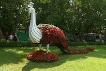 بنگلورو کےلال باغ میں فلاور شو کا آغاز ، ہرطرف رنگ برنگے پھولوں کا دلکش نظارہ
