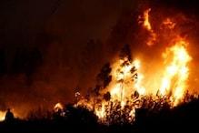 تمل ناڈو کے کورنگانی جنگل میں آتشزدگی، مرنے والوں کی تعداد 8 ہوئی