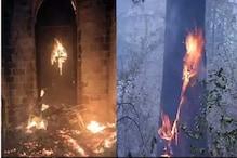 ہماچل : جنگل میں بے قابو آگ میں اب تک 8 کی موت ، زندہ جلی بزرگ خاتون