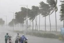 طوفان امفان نے چھینی کولکاتا کی سرسبز و شادابی ، گورنر نے کی یہ خاص اپیل
