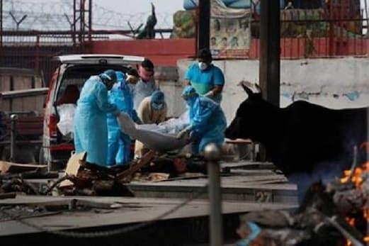 سپریم کورٹ نے کہا۔ کورونا مریضوں کے ساتھ ہو رہا ہے جانوروں سے بدتر سلوک، دہلی سمیت 4 ریاستوں کو نوٹس