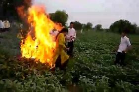 مدھیہ پردیش: گنا کے بعد دیواس کے ست گاؤ ں کے ایک مسلم کسان پر دہرائی گئی ظلم کی تاریخ