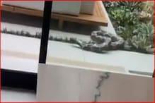 امریکی ماڈل نے اپنی ماں کے ساتھ کردی کچھ ایسی حرکت کہ چیخ اٹھی خاتون اور پھر ہوا یہ۔۔۔
