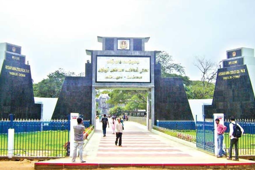 Vandalur Zoo, வண்டலூர் உயிரியல் பூங்கா,