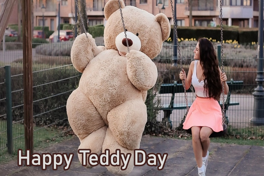 #happy teddy day 2019