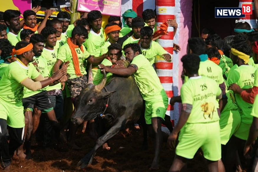Photos: Stalin & Karunakaran, (News18 Reporters - Madurai)