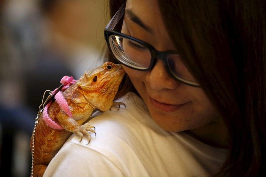 மனிதர்கள் - மிருகங்கள் இடையேயான பாசப்போராட்டம் (Image: Reuters)