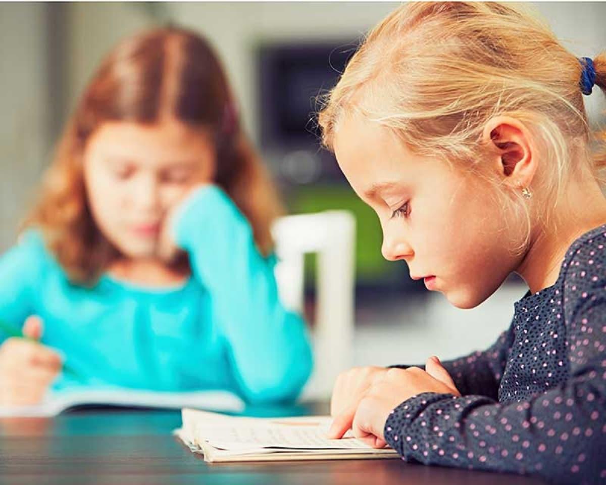 பொதுவாக குழந்தைகளுக்கு பலவற்றை பிரித்துமேய ஒரு உள்ளார்ந்த ஆர்வம் உள்ளது (Children have an innate curiosity to explore). பொதுவாக அவர்களின் பொம்மைகள், கதைப்புத்தகங்கள் அல்லது நண்பர்களுடன் வெளியில் விளையாடும்போது மகிழ்ச்சியாக இருப்பார்கள் (toys, storybooks or while playing outdoors with friends). பள்ளிகள், ஒழுக்கம் மற்றும் கட்டுக்கோப்பின் மூலம் கடுமையான இணக்கத்தன்மை கொண்ட ஒரு இடம், மேலும் நாம் நமக்கு அளிக்கப்பட்ட வேலையை சரிவர செய்யவில்லை எனில் தண்டனை அச்சுறுத்தல்கள் மூலம் செயல்படுத்தப்படுகின்றன.