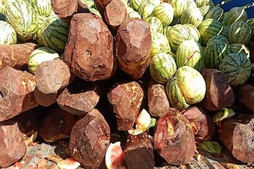 ஆந்திராவில் இருந்து கடத்திவரப்பட்ட 1 டன் செம்மரக்கட்டைகள் பறிமுதல்