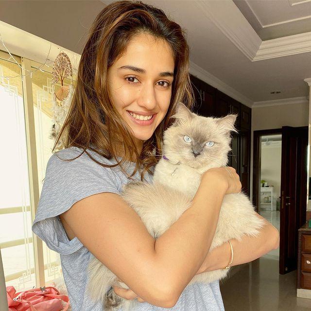 நடிகை திஷா பதானி ( Image: Instagram @dishapatani)