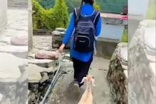 பள்ளிக்கு செல்லும் சிறுமியை ஃபாலோ செய்த ஆடு - வைரலாகும் வீடியோ!