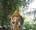 விழுப்புரம்:செஞ்சி அருகே கொற்றவை சிலை கண்டெடுப்பு