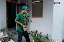 రోజూ మొక్క నాటే గ్రీన్ గురూజీ..!