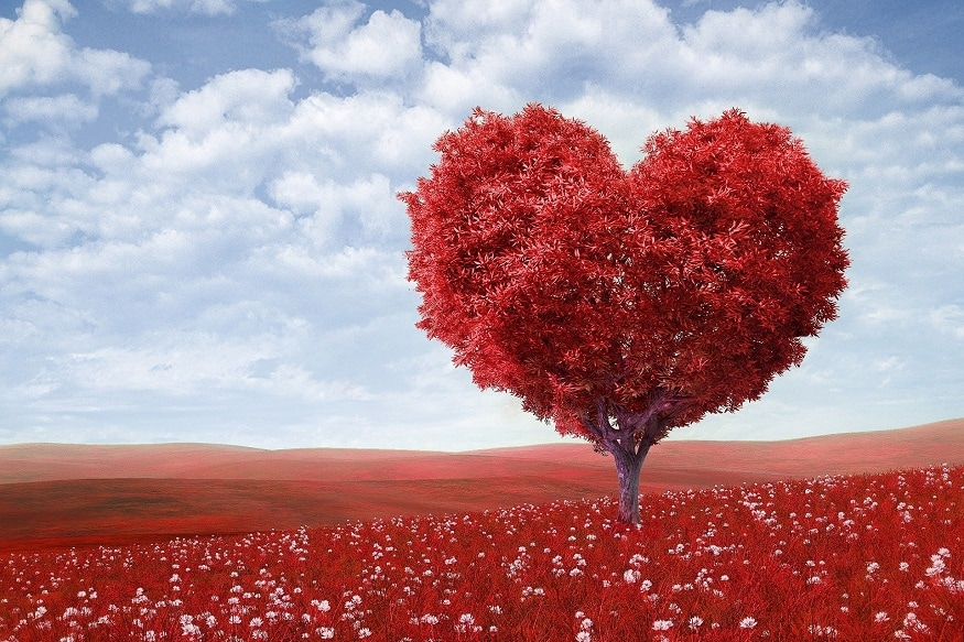 valentine's day history, valentine's day facts, short history of valentine's day, valentines day meaning, valentines day week 2019, valentine week, valentines day week list, valentine week list 2019, valentines day list, వాలెంటైన్స్ డే హిస్టరీ, వాలెంటైన్స్ డే చరిత్ర, వాలెంటైన్స్ డే అంటే ఏంటీ?, వాలెంటైన్స్ డే ఎందుకు? ఫిబ్రవరి 14న ప్రేమికుల రోజు ఎందుకు?