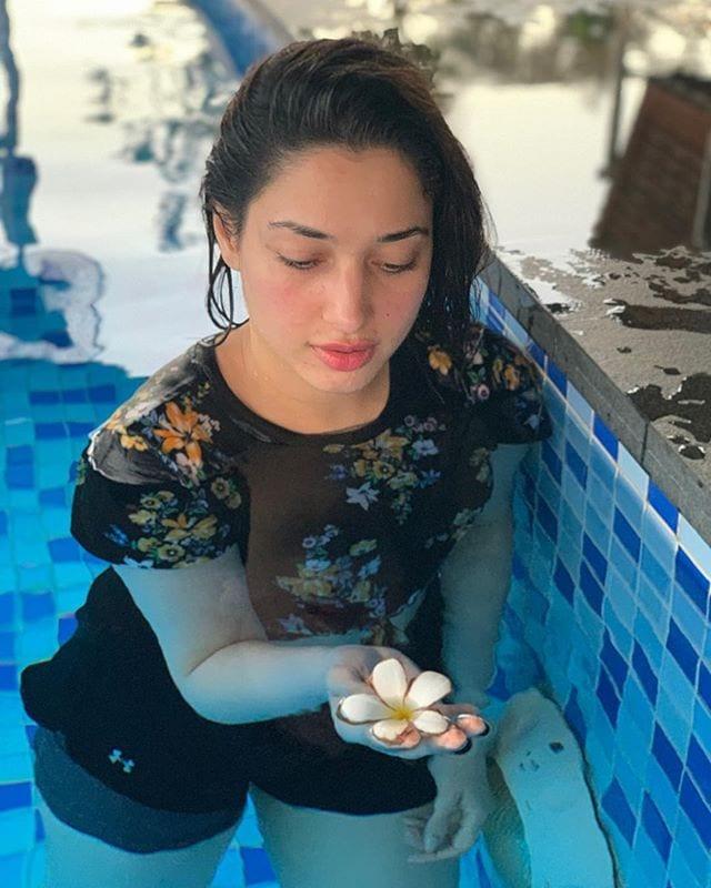 స్విమ్మింగ్ పూల్లో పూలతో.. మిల్కీ బ్యూటీ తమన్నా హాట్ స్నానాలు Photo: Instagram.com/tamannaahspeaks