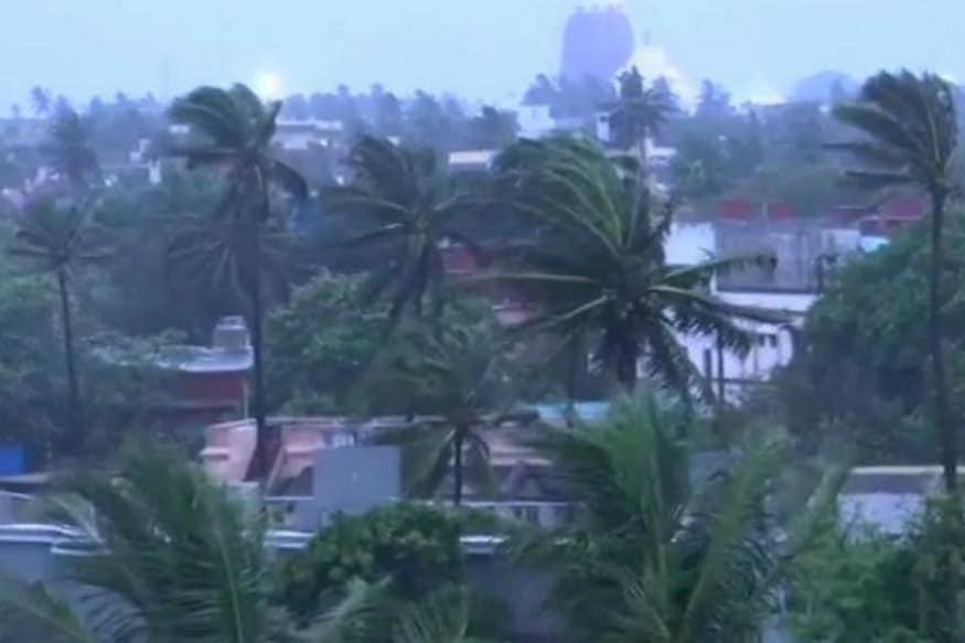 ఫొణి తుఫాను దాటికి చిగురుటాకులా వణుకుతున్న చెట్లు (Image : AP)
