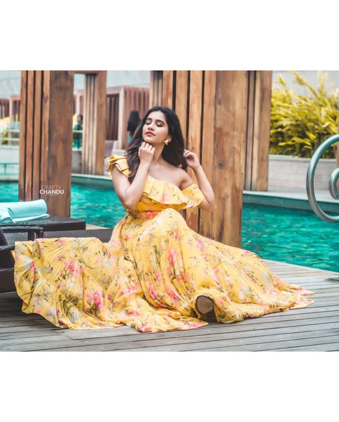 ఇస్మార్ట్ శంకర్ 'నభా నటేష్' హాట్ ఫోటో షూట్ / Instagram Photos