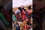 Video: బైక్పై ఏడు మంది ప్రయాణం..కోళ్లు, కుక్కలు కూడా