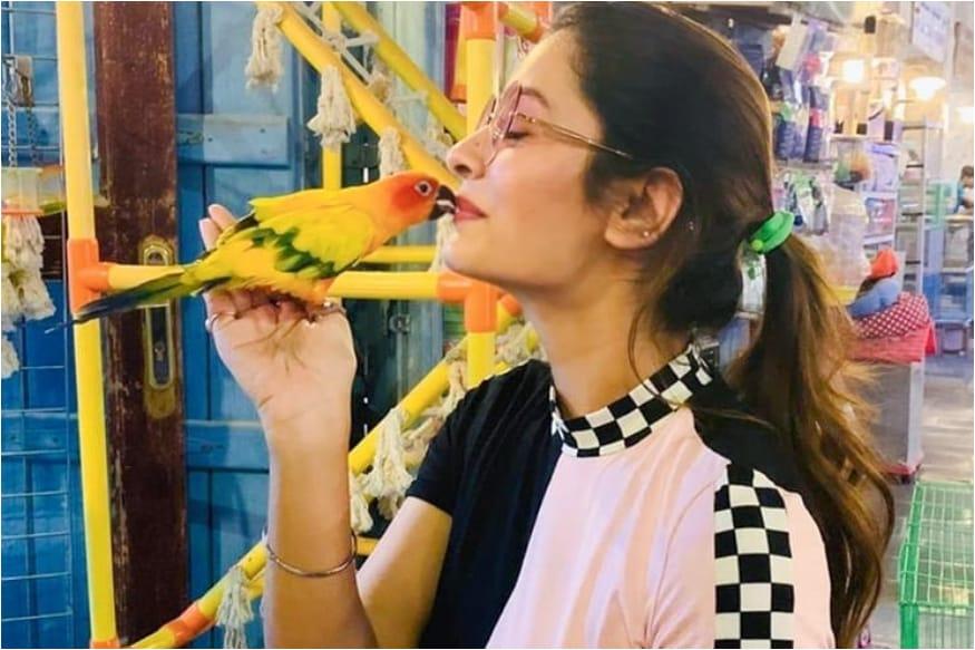 'RX 100' అనే చిత్రంలో తన బోల్డ్ నటనతో యువ హృదయాలను క్లీన్ బౌల్డ్ చేసింది హాట్ బ్యూటీ పాయల్ రాజ్పుత్.