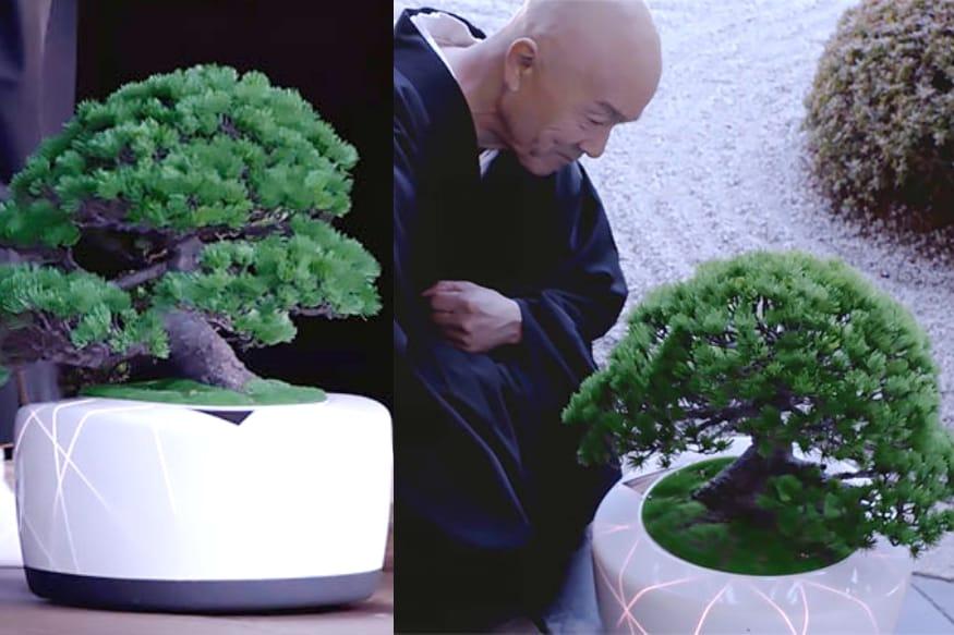 bonsai,smart,4smarts,small orange tree bonsai,how to make small bonsai pot,bons-ai,diy cement bonsai pot,bonsai pots,smart watch,smart robot,bonsai fruit,bonsai craft,bonsai robot,diy meme bonsai pot,cement casting a bonsai pot,beautiful cement bonsai pot,selecting a bonsai pot,best beautiful bonsai,bonsai pot making,bonsai pot new style,diy shohin bonsai pot,bonsai pot tutorials,స్మార్ట్ బోన్సాయ్,