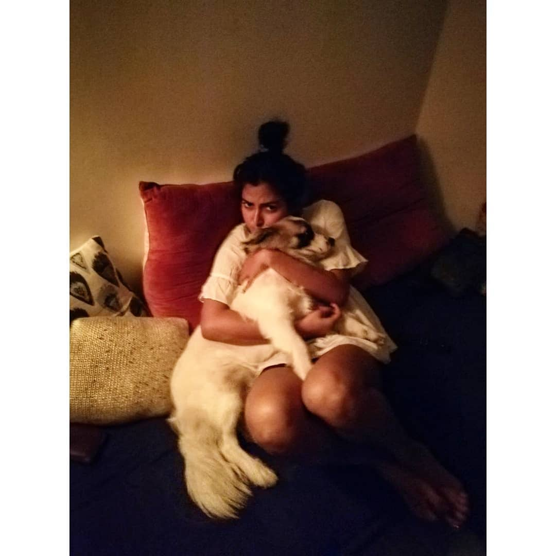 అమలా పాల్ బిగి కౌగిలిలో కుక్క పిల్ల Photo: Instagram/amalapaul