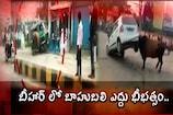 Video: బీహార్ లో బాహుబలి ఎద్దు భీభత్సం..