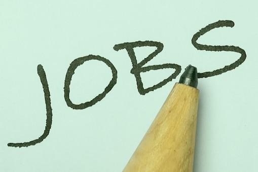Andhra Pradesh Jobs: ఏపీలో 16,208 జాబ్స్... అప్లై చేయండి ఇలా