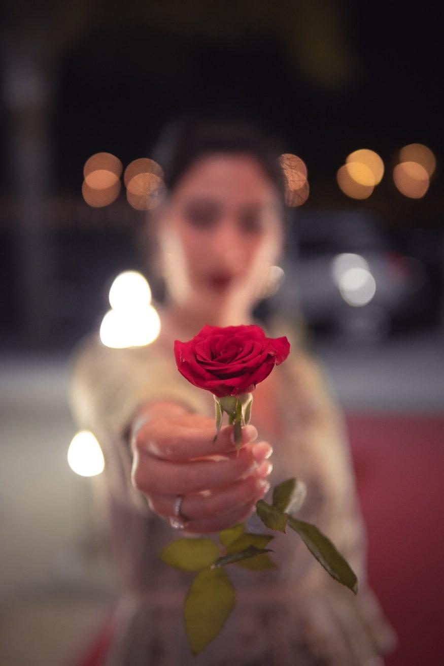 9. Rose: ప్రేమను వ్యక్తం చేయడానికి గులాబీని మించిన మరో వస్తువు ఉండదు. మంచి గులాబీని లేదా రోజ్ ఫ్లవర్ బొకేని గిఫ్ట్గా ఇవ్వండి. (ప్రతీకాత్మక చిత్రం)