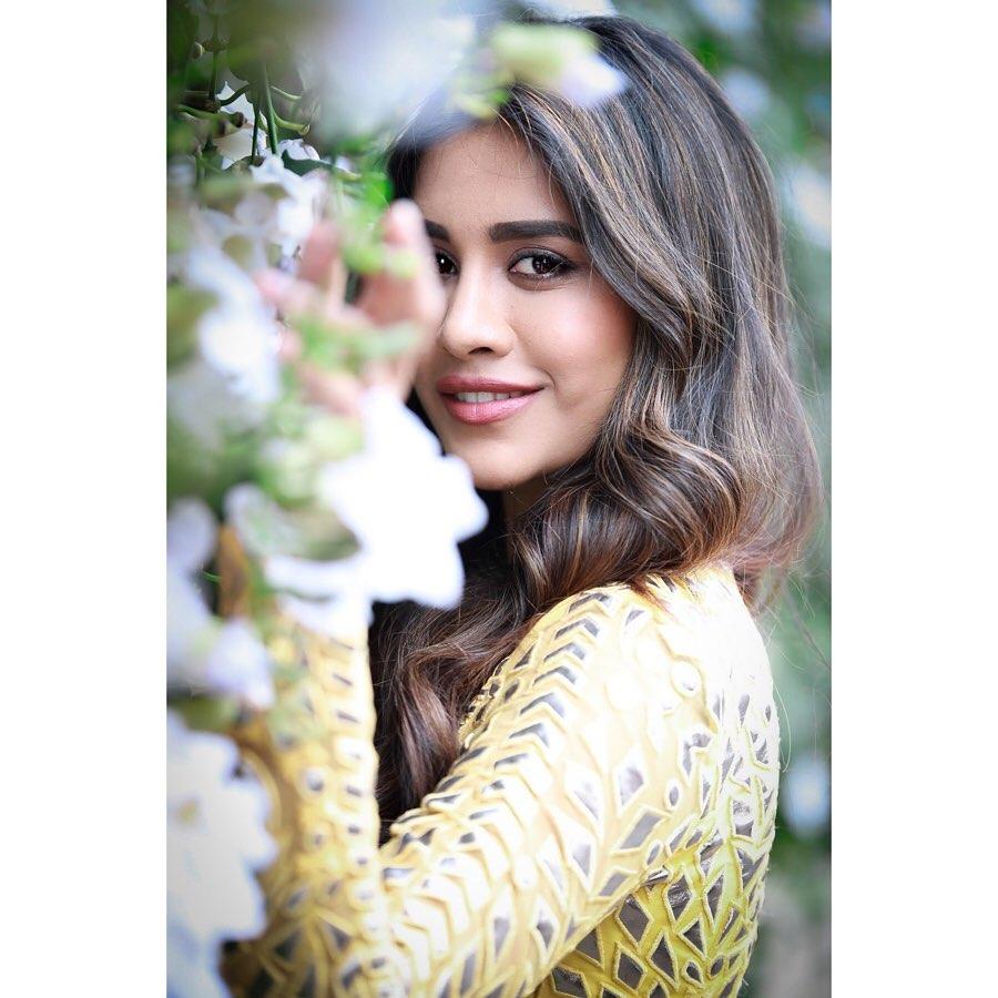 నభా నటేష్ లేటెస్ట్ ఫోటో షూట్ (Instagram/Photos)