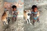 Video: కుక్క, పిల్లలు, ఓ పిల్లోడు.. గుండెల్ని పిండే దృశ్యం..