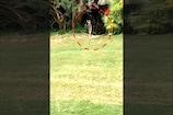 Video : గోల్ఫ్ కోర్సులో... పాముల కోలాహలం
