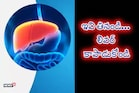 Health : కాలేయాన్ని కాపాడే 5 ఆయుర్వేద మూలికలు...