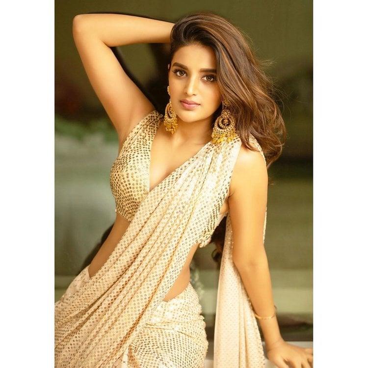 నిధి అగర్వాల్ హాట్ షో (nidhhi agerwal hot photos/instagram)