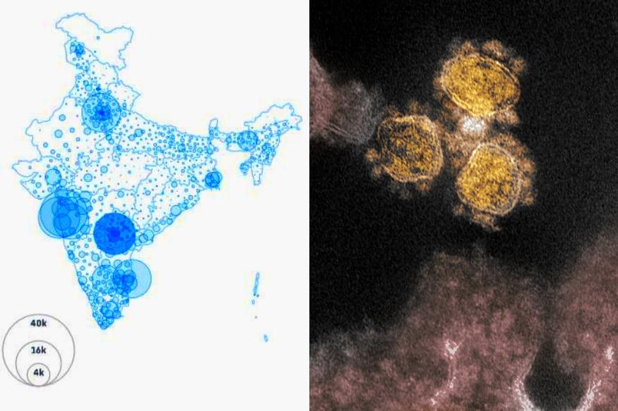 Coronavirus updates : గతేడాది డిసెంబర్లో కరోనా వైరస్ వచ్చిన కొత్తలో... ఆ వైరస్ ఇండియాలో వస్తే ఇంకేమైనా ఉందా... అమ్మో అనుకున్నాం. ఐతే... ఫిబ్రవరిలో ఇండియాలో వైరస్ ప్రవేశించినా... మొదట్లో తీవ్రత అంతగా లేకపోవడంతో... భారత్కి కరోనా ముప్పు లేనట్లే అని అంతా అనుకున్నారు. అప్పటికే చాలా అధ్యయన సంస్థలు... ఇండియాలో కరోనా వైరస్ వస్తే... అది ఏ స్థాయిలో వ్యాపిస్తుందో కొన్ని అంచనాలు వేశాయి. మొదట్లో ఆ అంచనాలన్నీ తప్పయ్యాయి. ఫిబ్రవరి, మార్చి, ఏప్రిల్లో ఇండియాలో కరోనా అంత జోరుగా లేదు. కానీ... లాక్డౌన్ ఎత్తివేశాక జోరు పెరిగింది. మే, జూన్లో కేసుల సంఖ్య పెరుగుతూ వచ్చింది. జులైలో అది మరింత ఎక్కువైంది. ఇప్పుడైతే... రోజూ 50 వేల దాకా కేసులొస్తున్నాయి. ఇండియాలో పాజిటివ్ కేసుల సంఖ్య 1000 నుంచి లక్షకు చేరడానికి 51 రోజులు పట్టింది. లక్ష నుంచి 10 లక్షలు చేరడానికి 59 రోజులే పట్టింది. మున్ముందు ఈ సంఖ్య ఇంకా పెరుగుతుందని అంటున్నారు. దేశంలో కమ్యూనిటీ స్ప్రెడ్ మొదలైంది కాబట్టి... ఆగస్ట్లో మరింత ఎక్కువ అప్రమత్తంగా ఉండాలని అంటున్నారు. (credit - NIAID)