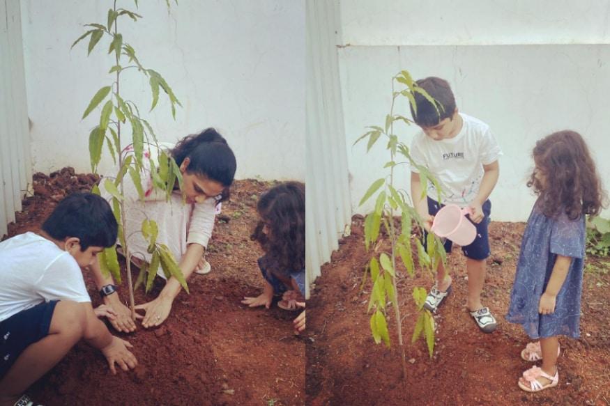 అల్లు స్నేహా రెడ్డి గ్రీన్ ఇండియా ఛాలెంజ్ (Allu Sneha green india challenge)