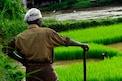 PM Kisan Samman Nidhi: పీఎం కిసాన్ లబ్ధిదారులకు హెచ్చరిక.. ఇలా చేస్తే మాత్రం జైలుకు..