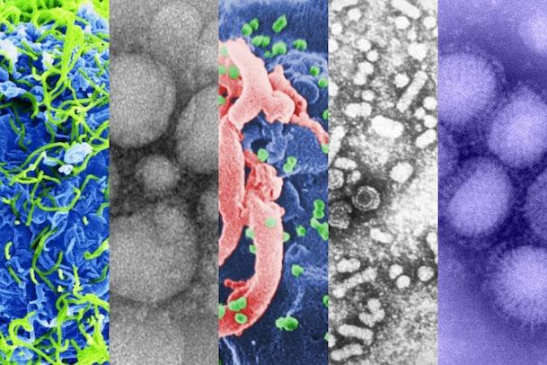 World of Virus: ప్రపంచాన్ని పట్టి పీడిస్తున్న వైరస్లు ఇవే... విజయం మనదే...