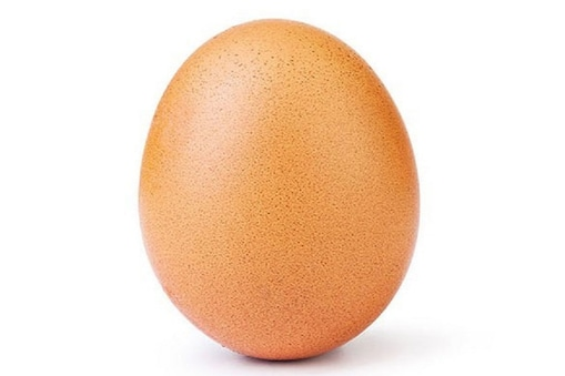 World Egg Day 2020: ఈ గుడ్డు పేరిట ప్రపంచ రికార్డు.. దీని కథేంటో తెలుసా?