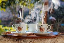 Tea benefits: ఎముకలను దృఢంగా మార్చే టీ... రోజూ ఇలా తాగండి