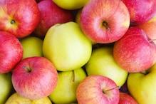 Apple Facts: బ్లాక్ డైమండ్ యాపిల్ ప్రత్యేకత ఏంటి?