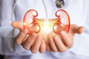 Kidney Stones: కిడ్నీలో రాళ్లా..? వాటిని కరిగించి బయటకు పంపే శక్తి దీనికి ఉందని తెలుసా..