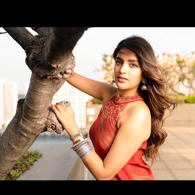నిధి అగర్వాల్ లేెటెస్ట్ ఫోటో షూట్ (Instagram/Photo)