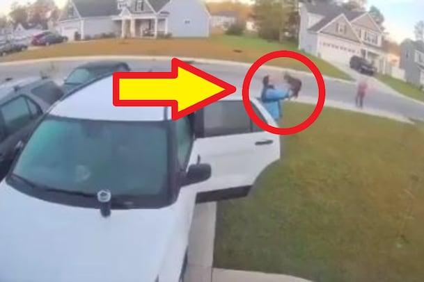 Viral Video: పిల్లిలా కనిపించిన అడవి పిల్లి.. దెయ్యంలా అరిచి ఏం చేసిందో వీడియో చూడండి